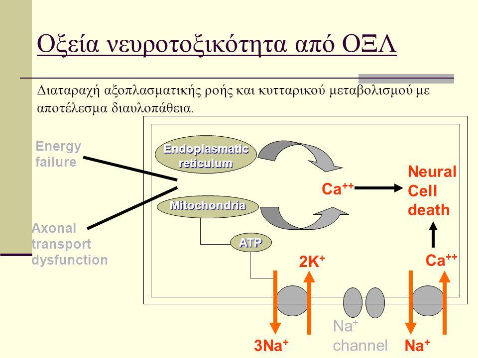 Οξεία νευροτοξικότητα από ΟΞΛ Endoplasmatic reticulum Mitochondria ATP Ca ++ Neural Cell death 2K + 3Na + Na + Ca ++ Na + channel Axonal transport dysfunction Energy failure Διαταραχή αξοπλασματικής ροής και κυτταρικού μεταβολισμού με αποτέλεσμα διαυλοπάθεια.