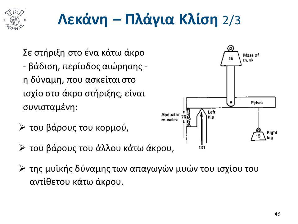 Λεκάνη – Πλάγια Κλίση 2/3 Σε στήριξη στο ένα κάτω άκρο - βάδιση, περίοδος αιώρησης - η δύναμη, που ασκείται στο ισχίο στο άκρο στήριξης, είναι συνισταμένη:  του βάρους του κορμού,  του βάρους του άλλου κάτω άκρου,  της μυϊκής δύναμης των απαγωγών μυών του ισχίου του αντίθετου κάτω άκρου.