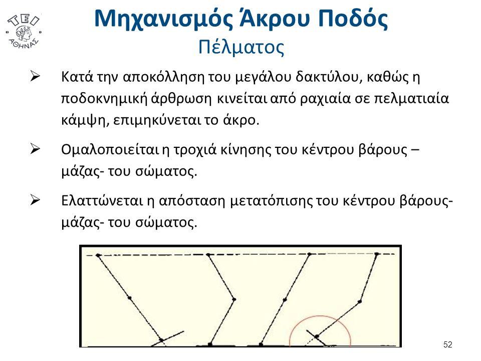 Μηχανισμός Άκρου Ποδός Πέλματος  Κατά την αποκόλληση του μεγάλου δακτύλου, καθώς η ποδοκνημική άρθρωση κινείται από ραχιαία σε πελματιαία κάμψη, επιμηκύνεται το άκρο.