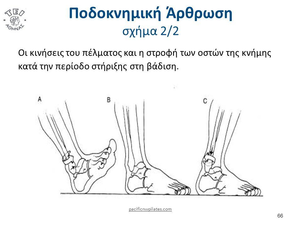 Ποδοκνημική Άρθρωση σχήμα 2/2 Οι κινήσεις του πέλματος και η στροφή των οστών της κνήμης κατά την περίοδο στήριξης στη βάδιση.