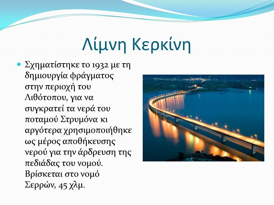 Λίμνη Κερκίνη Σχηματίστηκε το 1932 με τη δημιουργία φράγματος στην περιοχή του Λιθότοπου, για να συγκρατεί τα νερά του ποταμού Στρυμόνα κι αργότερα χρησιμοποιήθηκε ως μέρος αποθήκευσης νερού για την άρδρευση της πεδιάδας του νομού.