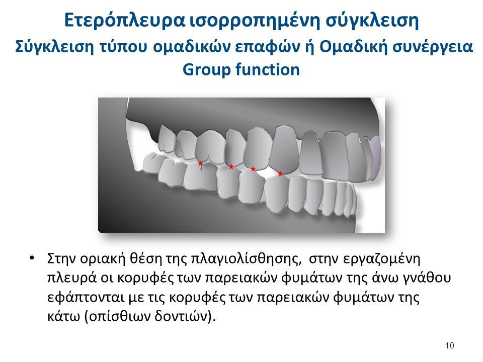 Σύγκλειση τύπου ομαδικών επαφών ή Ομαδική συνέργεια Group function Στην οριακή θέση της πλαγιολίσθησης, στην εργαζομένη πλευρά οι κορυφές των παρειακών φυμάτων της άνω γνάθου εφάπτονται με τις κορυφές των παρειακών φυμάτων της κάτω (οπίσθιων δοντιών).