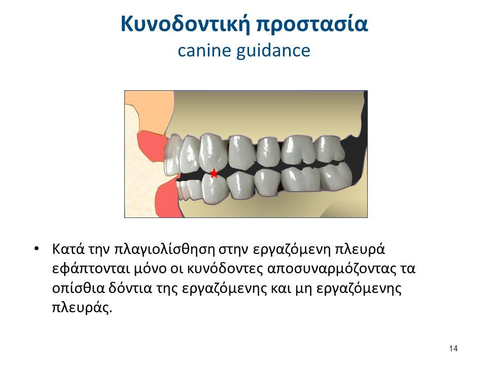 Κατά την πλαγιολίσθηση στην εργαζόμενη πλευρά εφάπτονται μόνο οι κυνόδοντες αποσυναρμόζοντας τα οπίσθια δόντια της εργαζόμενης και μη εργαζόμενης πλευράς.