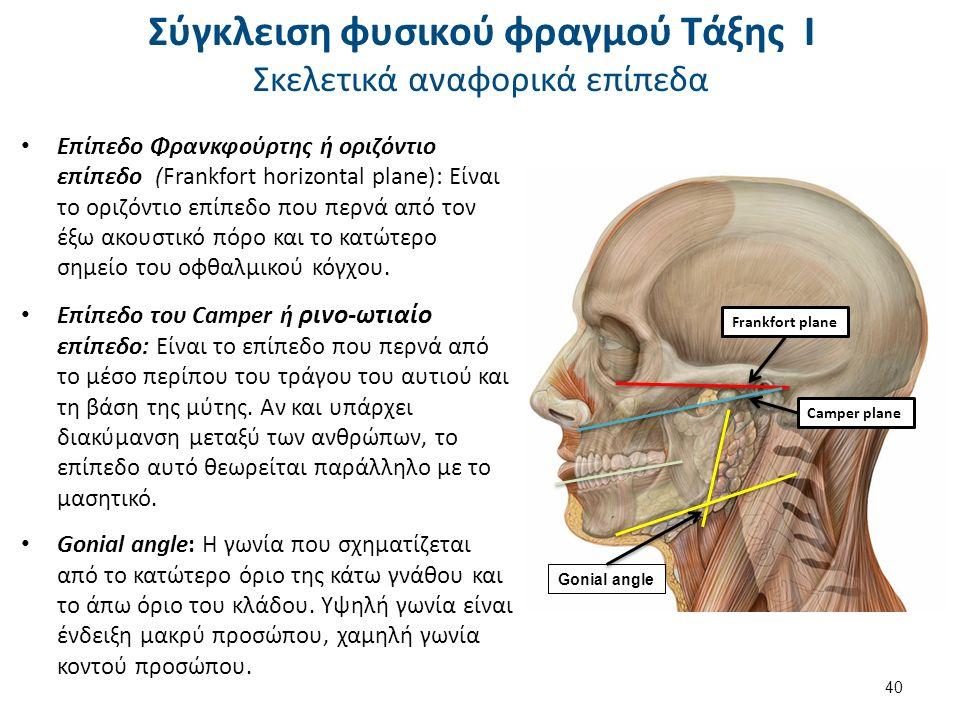 Επίπεδο Φρανκφούρτης ή οριζόντιο επίπεδο (Frankfort horizontal plane): Είναι το οριζόντιο επίπεδο που περνά από τον έξω ακουστικό πόρο και το κατώτερο σημείο του οφθαλμικού κόγχου.