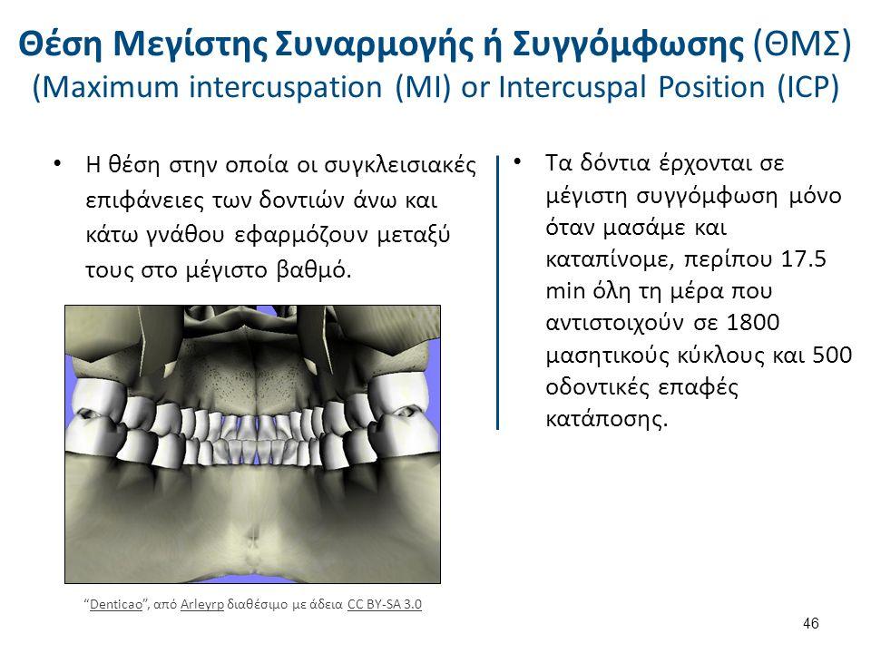 Η θέση στην οποία οι συγκλεισιακές επιφάνειες των δοντιών άνω και κάτω γνάθου εφαρμόζουν μεταξύ τους στο μέγιστο βαθμό.