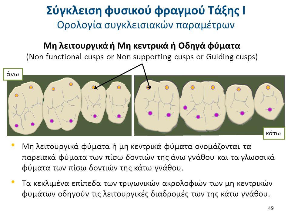 Μη λειτουργικά φύματα ή μη κεντρικά φύματα ονομάζονται τα παρειακά φύματα των πίσω δοντιών της άνω γνάθου και τα γλωσσικά φύματα των πίσω δοντιών της κάτω γνάθου.