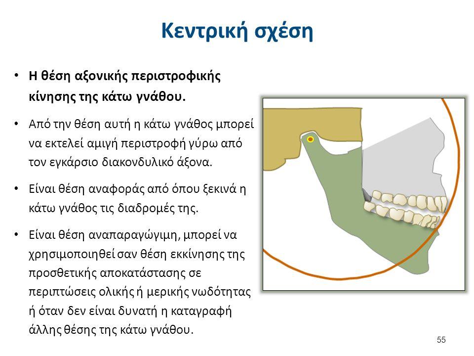 55 Κεντρική σχέση Η θέση αξονικής περιστροφικής κίνησης της κάτω γνάθου.