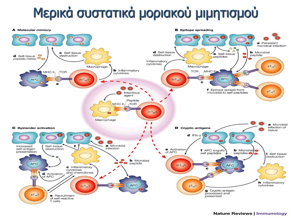 Μερικά συστατικά μοριακού μιμητισμού