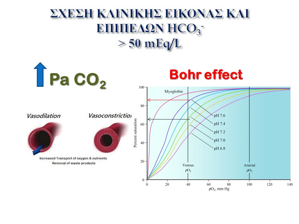 Pa CO 2 Bohr effect