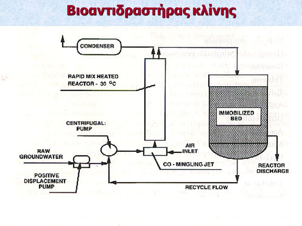 Βιοαντιδραστήρας κλίνης