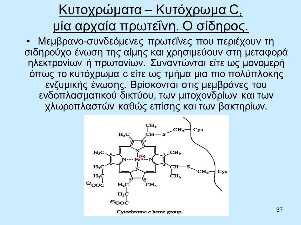 37 Κυτοχρώματα – Κυτόχρωμα C, μία αρχαία πρωτεΐνη.
