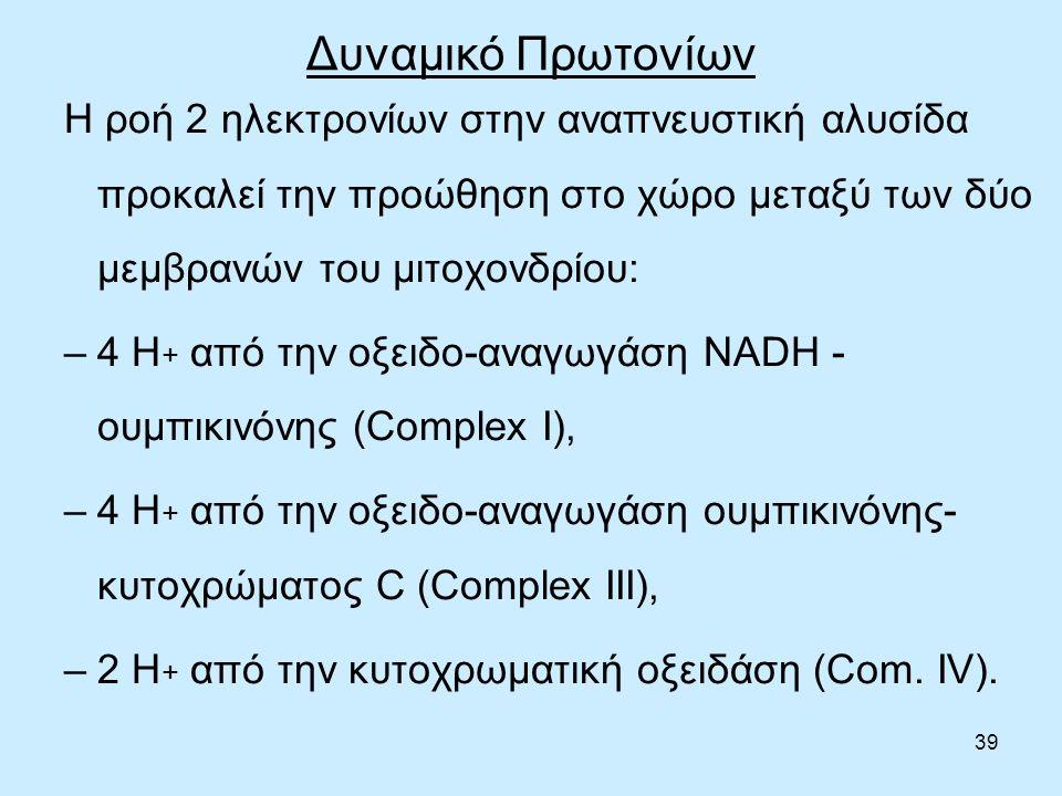 39 Δυναμικό Πρωτονίων Η ροή 2 ηλεκτρονίων στην αναπνευστική αλυσίδα προκαλεί την προώθηση στο χώρο μεταξύ των δύο μεμβρανών του μιτοχονδρίου: –4 Η + από την οξειδο-αναγωγάση NADH - ουμπικινόνης (Complex I), –4 Η + από την οξειδο-αναγωγάση ουμπικινόνης- κυτοχρώματος C (Complex III), –2 Η + από την κυτοχρωματική οξειδάση (Com.