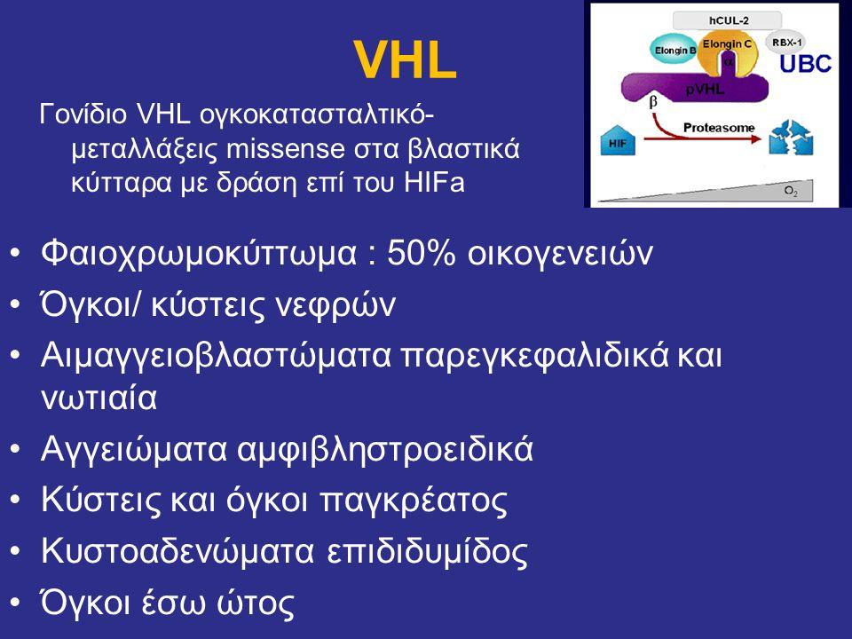 VHL Γονίδιο VHL ογκοκατασταλτικό- μεταλλάξεις missense στα βλαστικά κύτταρα με δράση επί του HIFa Φαιοχρωμοκύττωμα : 50% οικογενειών Όγκοι/ κύστεις νε