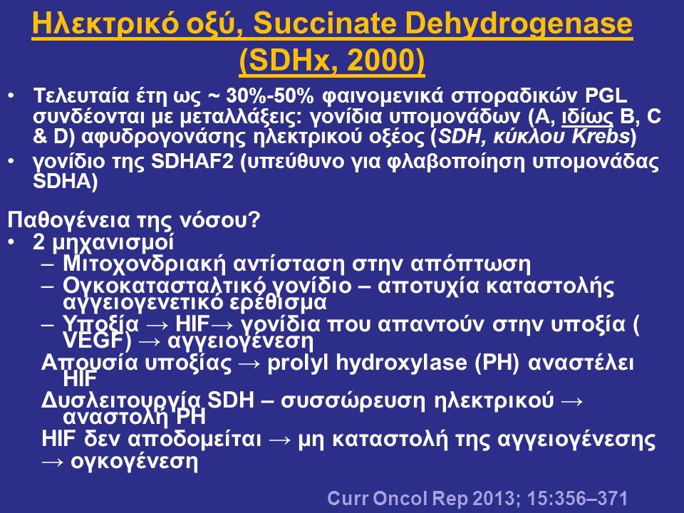 Τελευταία έτη ως ~ 30%-50% φαινομενικά σποραδικών ΡGL συνδέονται με μεταλλάξεις: γονίδια υπομονάδων (Α, ιδίως Β, C & D) αφυδρογονάσης ηλεκτρικού οξέος