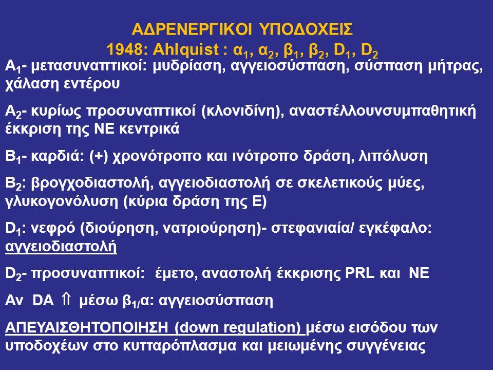 ΑΔΡΕΝΕΡΓΙΚΟΙ ΥΠΟΔΟΧΕΙΣ 1948: Ahlquist : α 1, α 2, β 1, β 2, D 1, D 2 Α 1 - μετασυναπτικοί: μυδρίαση, αγγειοσύσπαση, σύσπαση μήτρας, χάλαση εντέρου Α 2