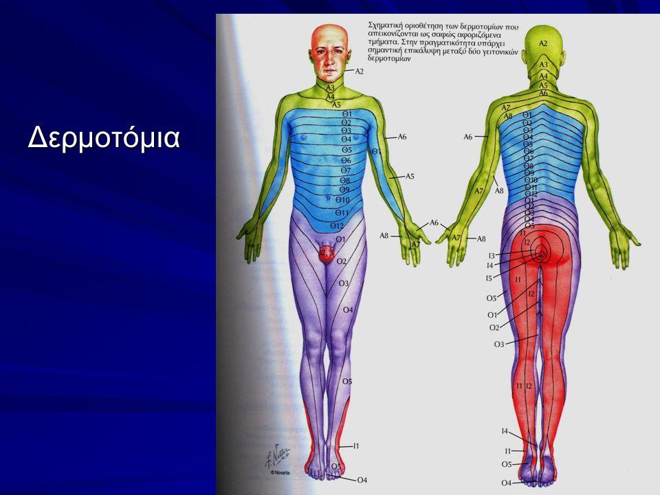 Φυματιώδης σπονδυλίτιδα