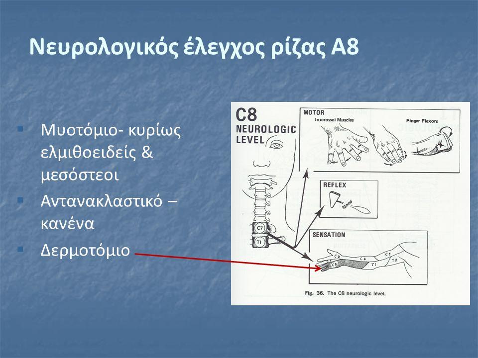  Μυοτόμιο- κυρίως ελμιθοειδείς & μεσόστεοι  Αντανακλαστικό – κανένα  Δερμοτόμιο Νευρολογικός έλεγχος ρίζας Α8