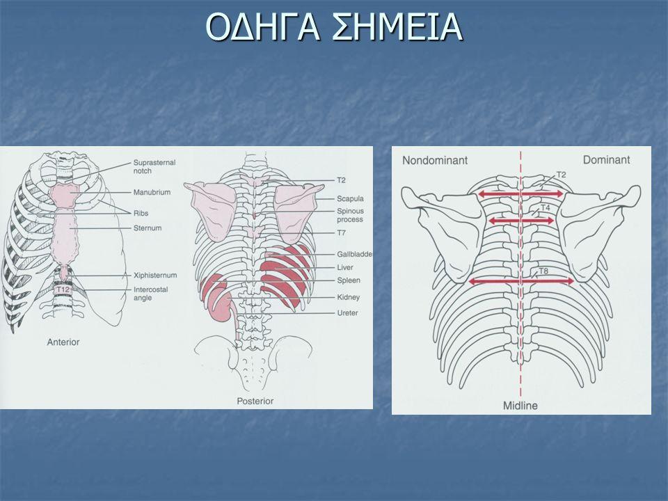 ΔΕΡΜΟΤΟΜΙΑ L=Lumbar=Οσφυϊκό S=Sacral=Ιερό Τ=Thorasic=Θωρακικό