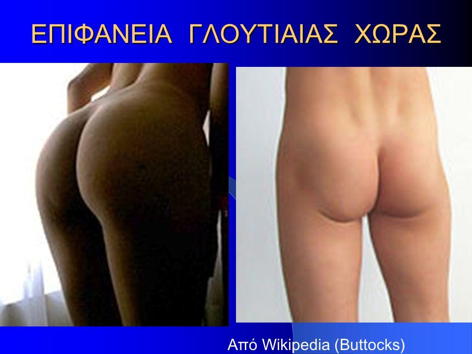 ΕΠΙΦΑΝΕΙΑ ΓΛΟΥΤΙΑΙΑΣ ΧΩΡΑΣ Από Wikipedia (Buttocks)