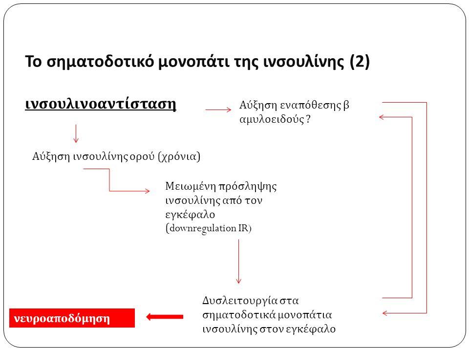 Το σηματοδοτικό μονοπάτι της ινσουλίνης (2) ινσουλινοαντίσταση Αύξηση εναπόθεσης β αμυλοειδούς .