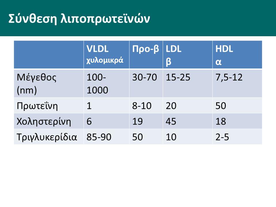 Σύνθεση λιποπρωτεϊνών VLDL χυλομικρά Προ-βLDL β HDL α Μέγεθος (nm) 100- 1000 30-7015-257,5-12 Πρωτεΐνη18-102050 Χοληστερίνη6194518 Τριγλυκερίδια85-9050102-5