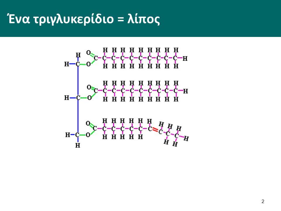Ένα τριγλυκερίδιο = λίπος 2