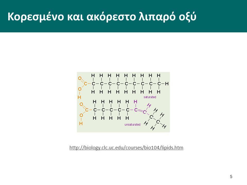 Κορεσμένο και ακόρεστο λιπαρό οξύ 5 http://biology.clc.uc.edu/courses/bio104/lipids.htm