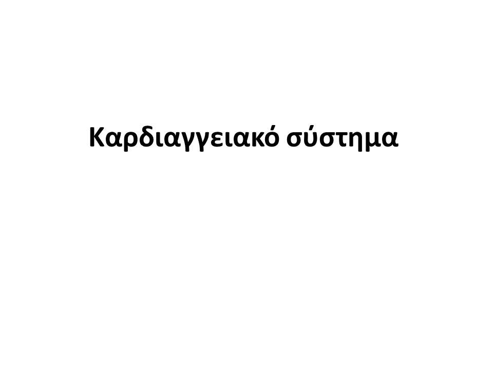 Βαλβίδες