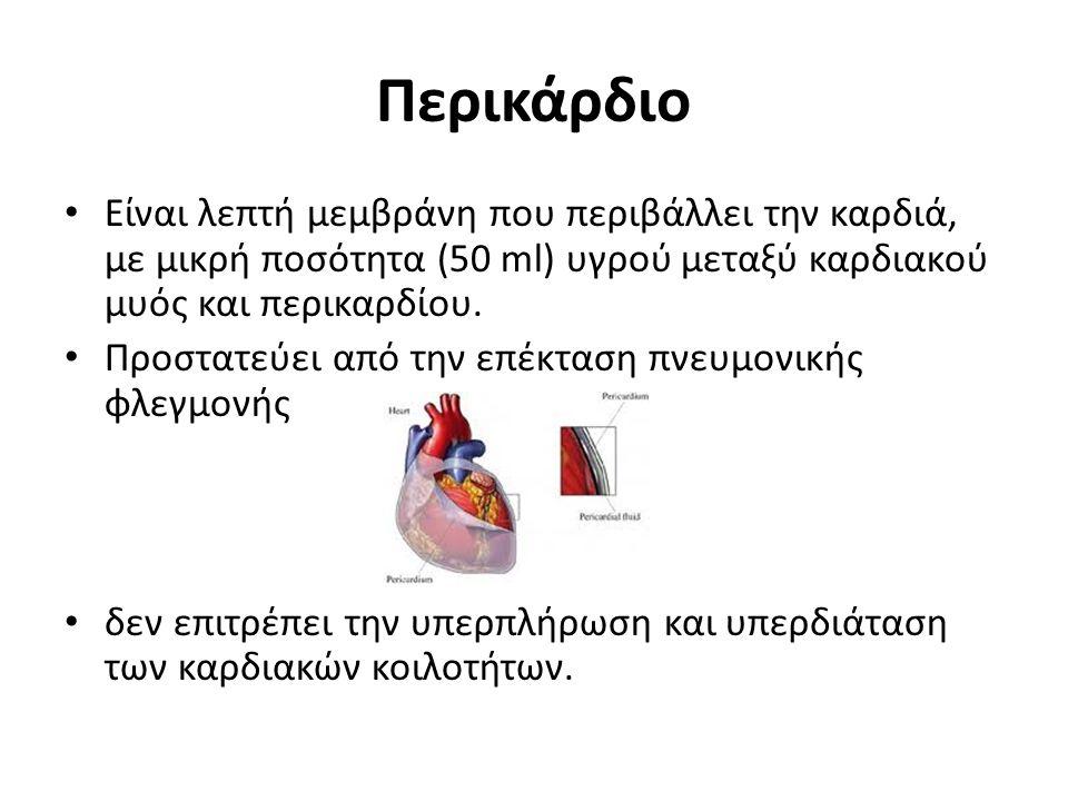 Περικάρδιο Είναι λεπτή μεμβράνη που περιβάλλει την καρδιά, με μικρή ποσότητα (50 ml) υγρού μεταξύ καρδιακού μυός και περικαρδίου.