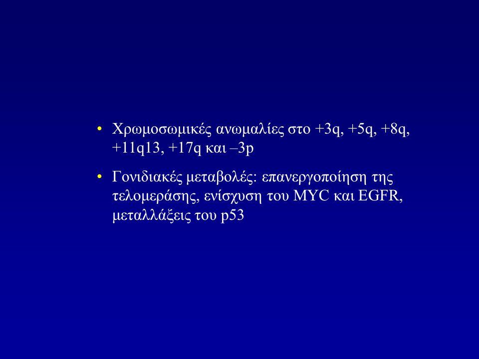 Χρωμοσωμικές ανωμαλίες στο +3q, +5q, +8q, +11q13, +17q και –3p Γονιδιακές μεταβολές: επανεργοποίηση της τελομεράσης, ενίσχυση του ΜΥC και EGFR, μεταλλάξεις του p53
