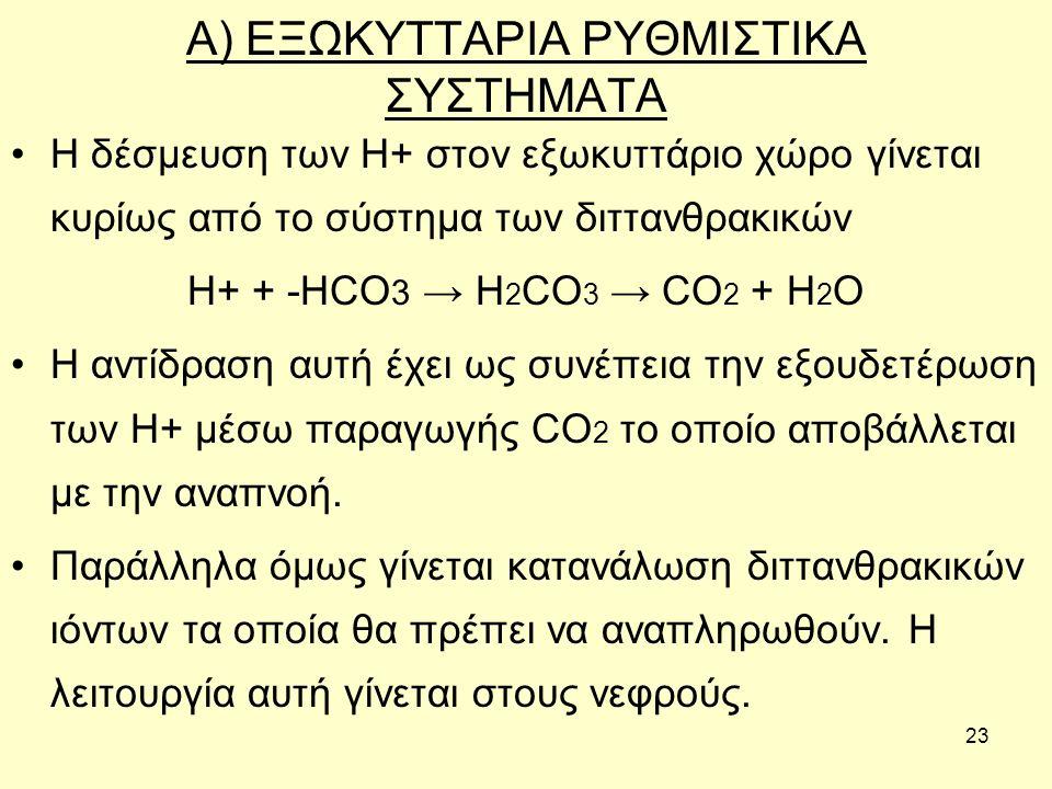 23 Α) ΕΞΩΚΥΤΤΑΡΙΑ ΡΥΘΜΙΣΤΙΚΑ ΣΥΣΤΗΜΑΤΑ Η δέσμευση των Η+ στον εξωκυττάριο χώρο γίνεται κυρίως από το σύστημα των διττανθρακικών Η+ + -HCO 3 → H 2 CO 3