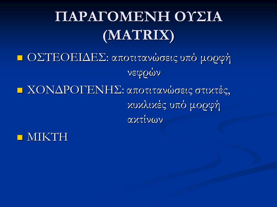 ΠΑΡΑΓΟΜΕΝΗ ΟΥΣΙΑ (ΜΑTRIX) ΟΣΤΕΟΕΙΔΕΣ: αποτιτανώσεις υπό μορφή νεφρών ΟΣΤΕΟΕΙΔΕΣ: αποτιτανώσεις υπό μορφή νεφρών ΧΟΝΔΡΟΓΕΝΗΣ: αποτιτανώσεις στικτές, κυ