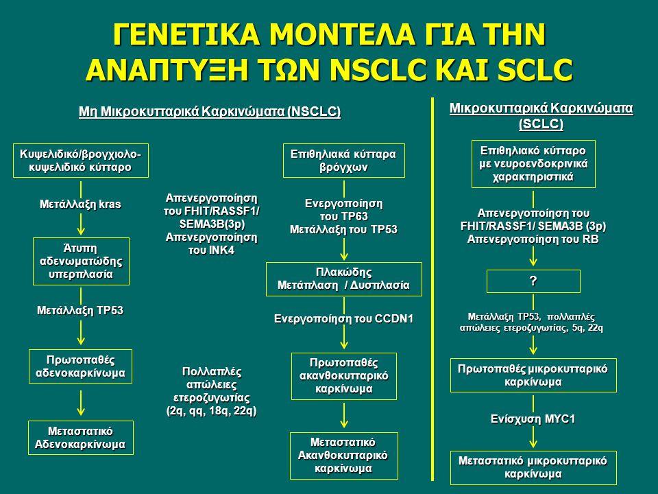 ΓΕΝΕΤΙΚΑ ΜΟΝΤΕΛΑ ΓΙΑ ΤΗΝ ΑΝΑΠΤΥΞΗ ΤΩΝ NSCLC ΚΑΙ SCLC Μη Μικροκυτταρικά Καρκινώματα (NSCLC) Μικροκυτταρικά Καρκινώματα (SCLC) Kυψελιδικό/βρογχιολο- κυψελιδικό κύτταρο Επιθηλιακά κύτταρα βρόγχων Μετάλλαξη kras Απενεργοποίηση του FHIT/RASSF1/ SEMA3B(3p) Απενεργοποίηση του ΙΝΚ4 Άτυπη αδενωματώδης υπερπλασία Μετάλλαξη ΤΡ53 Πρωτοπαθές αδενοκαρκίνωμα Μεταστατικό Αδενοκαρκίνωμα Ενεργοποίηση του ΤΡ63 Μετάλλαξη του ΤΡ53 Πλακώδης Μετάπλαση / Δυσπλασία Ενεργοποίηση του CCDN1 Πρωτοπαθές ακανθοκυτταρικό καρκίνωμα Πολλαπλές απώλειες ετεροζυγωτίας (2q, qq, 18q, 22q) Mεταστατικό Ακανθοκυτταρικό καρκίνωμα Επιθηλιακό κύτταρο με νευροενδοκρινικά χαρακτηριστικά Απενεργοποίηση του FHIT/RASSF1/ SEMA3B (3p) Απενεργοποίηση του RB .