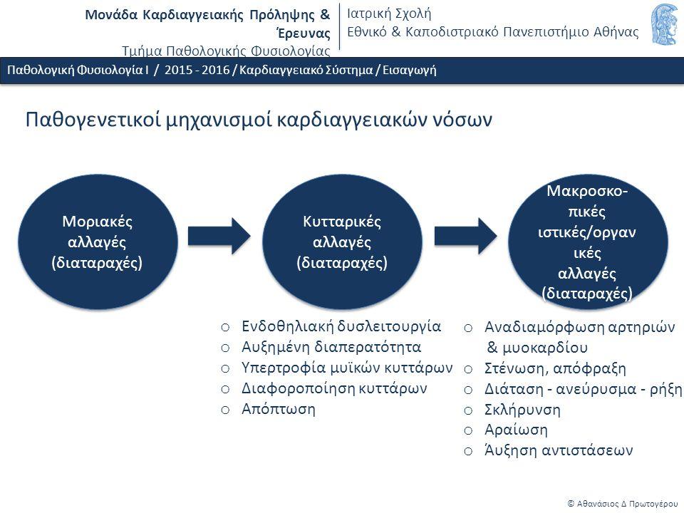 Μονάδα Καρδιαγγειακής Πρόληψης & Έρευνας Τμήμα Παθολογικής Φυσιολογίας Ιατρική Σχολή Εθνικό & Καποδιστριακό Πανεπιστήμιο Αθήνας Παθογενετικοί μηχανισμοί καρδιαγγειακών νόσων Μοριακές αλλαγές (διαταραχές) Μοριακές αλλαγές (διαταραχές) Κυτταρικές αλλαγές (διαταραχές) Κυτταρικές αλλαγές (διαταραχές) o Ενδοθηλιακή δυσλειτουργία o Αυξημένη διαπερατότητα o Υπερτροφία μυϊκών κυττάρων o Διαφοροποίηση κυττάρων o Απόπτωση o Αναδιαμόρφωση αρτηριών & μυοκαρδίου o Στένωση, απόφραξη o Διάταση - ανεύρυσμα - ρήξη o Σκλήρυνση o Αραίωση o Άυξηση αντιστάσεων © Αθανάσιος Δ Πρωτογέρου Παθολογική Φυσιολογία Ι / 2015 - 2016 / Καρδιαγγειακό Σύστημα / Εισαγωγή Μακροσκο- πικές ιστικές/οργαν ικές αλλαγές (διαταραχές) Μακροσκο- πικές ιστικές/οργαν ικές αλλαγές (διαταραχές)