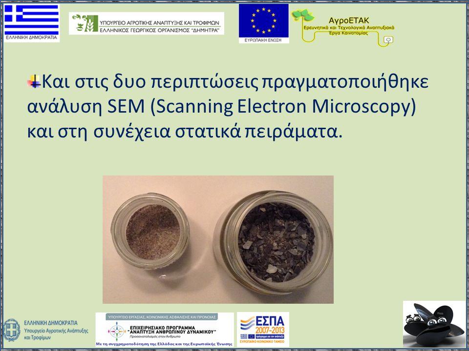 Και στις δυο περιπτώσεις πραγματοποιήθηκε ανάλυση SEM (Scanning Electron Microscopy) και στη συνέχεια στατικά πειράματα.