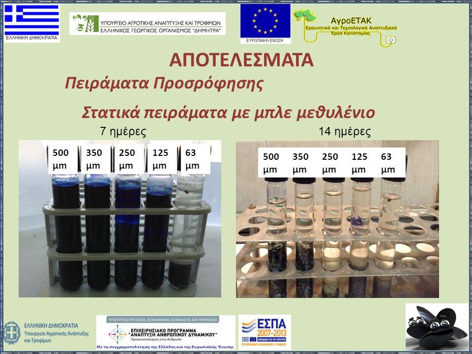 ΑΠΟΤΕΛΕΣΜΑΤΑ Πειράματα Προσρόφησης Στατικά πειράματα με μπλε μεθυλένιο 500 μm 350 μm 250 μm 125 μm 63 μm 500 μm 350 μm 250 μm 125 μm 63 μm 7 ημέρες14