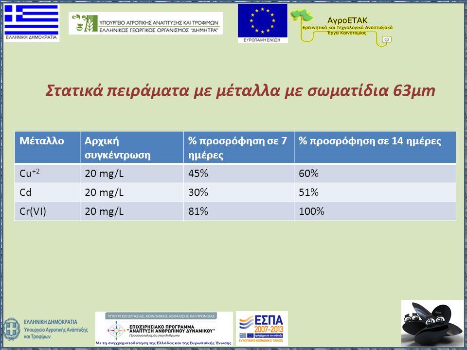 ΜέταλλοΑρχική συγκέντρωση % προσρόφηση σε 7 ημέρες % προσρόφηση σε 14 ημέρες Cu +2 20 mg/L45%60% Cd20 mg/L30%51% Cr(VI)20 mg/L81%100% Στατικά πειράματ