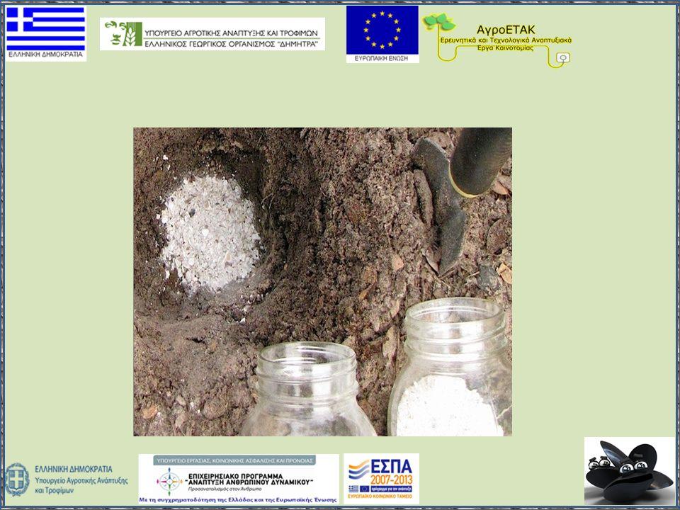 Δοκιμές φυτοτοξικότητας  Η ανάμειξη 25% εδάφους με κονιορτοποιημένα κελύφη σεν επέφερε καμία αλλαγή στη βλάστηση και ανάπτυξη των σπόρων  Η υδατοχωρητικότητα του εδάφους αυξήθηκε κατά 25% στα μείγματα με 50% κονιορτοποιημένα κελύφη, στα οποία παρατηρήθηκε βλάστηση αλλά όχι ανάπτυξη των σπόρων.