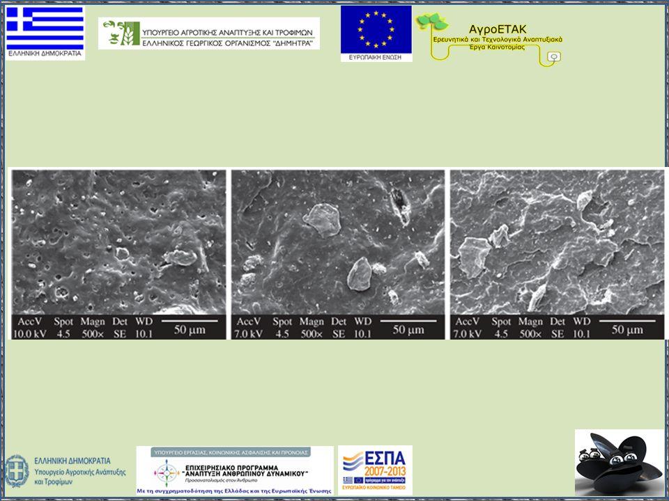 Περισσότερες πληροφορίες www.wastemusselshells.gr