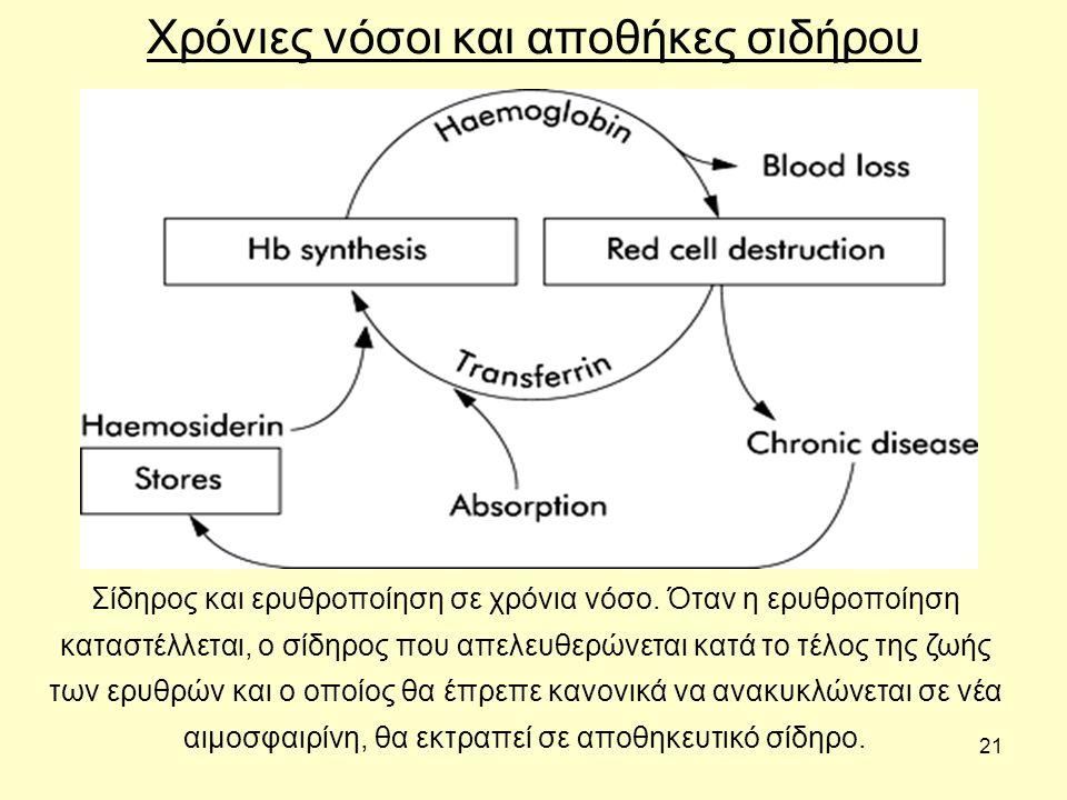 21 Χρόνιες νόσοι και αποθήκες σιδήρου Σίδηρος και ερυθροποίηση σε χρόνια νόσο. Όταν η ερυθροποίηση καταστέλλεται, ο σίδηρος που απελευθερώνεται κατά τ