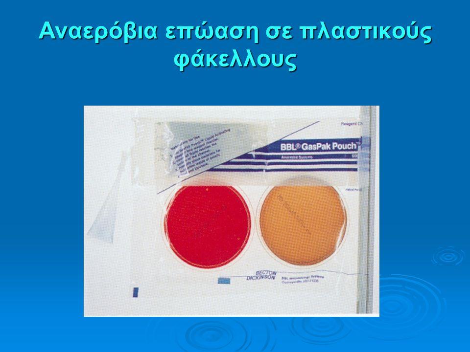 Αναερόβια επώαση σε πλαστικούς φάκελλους