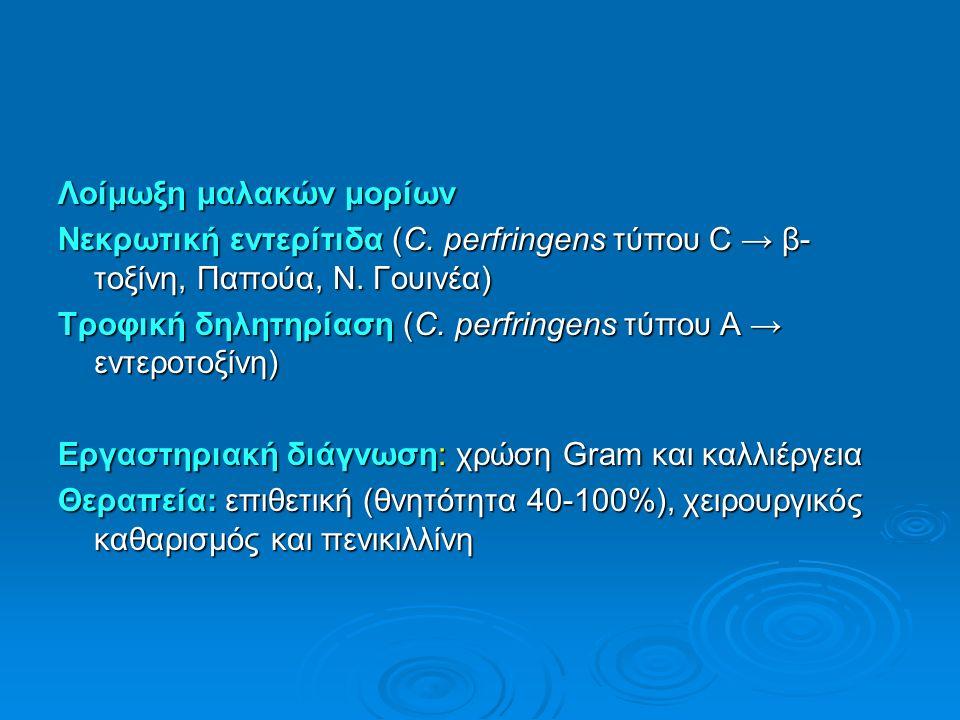 Λοίμωξη μαλακών μορίων Νεκρωτική εντερίτιδα (C. perfringens τύπου C → β- τοξίνη, Παπούα, Ν.