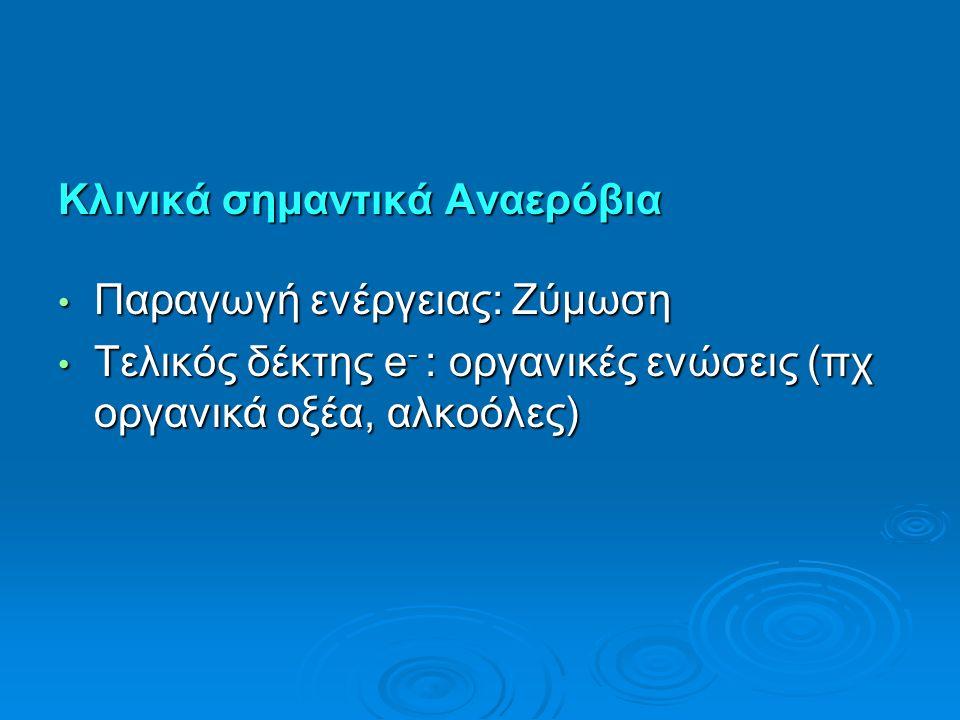 Κλινικά σημαντικά Αναερόβια Παραγωγή ενέργειας: Ζύμωση Παραγωγή ενέργειας: Ζύμωση Τελικός δέκτης e - : οργανικές ενώσεις (πχ οργανικά οξέα, αλκοόλες) Τελικός δέκτης e - : οργανικές ενώσεις (πχ οργανικά οξέα, αλκοόλες)