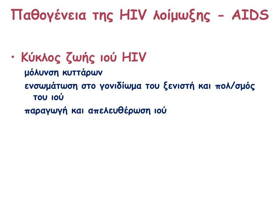 Παθογένεια της HIV λοίμωξης - ΑΙDS Κύκλος ζωής ιού HIV μόλυνση κυττάρων ενσωμάτωση στο γονιδίωμα του ξενιστή και πολ/σμός του ιού παραγωγή και απελευθέρωση ιού