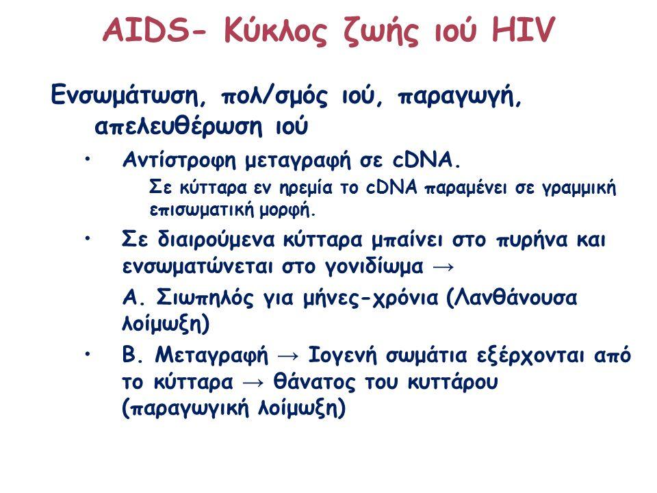 ΑΙDS- Κύκλος ζωής ιού HIV Ενσωμάτωση, πολ/σμός ιού, παραγωγή, απελευθέρωση ιού Αντίστροφη μεταγραφή σε cDNA. Σε κύτταρα εν ηρεμία το cDNA παραμένει σε
