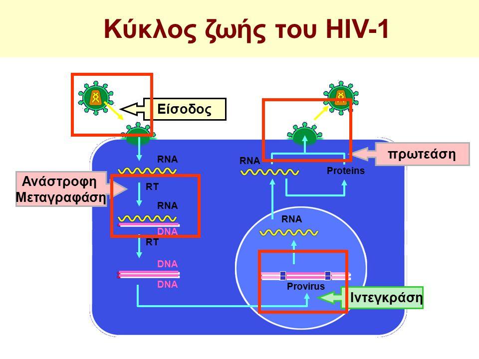 RT Provirus Proteins RNA DNA RNA DNA RT πρωτεάση Ανάστροφη Μεταγραφάση RNA DNA Είσοδος Ιντεγκράση Κύκλος ζωής του HIV-1