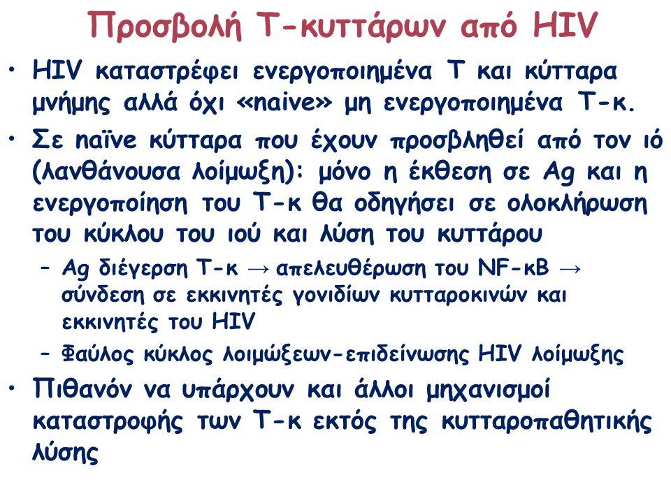 ΗΙV καταστρέφει ενεργοποιημένα Τ και κύτταρα μνήμης αλλά όχι «naive» μη ενεργοποιημένα Τ-κ. Σε naïve κύτταρα που έχουν προσβληθεί από τον ιό (λανθάνου