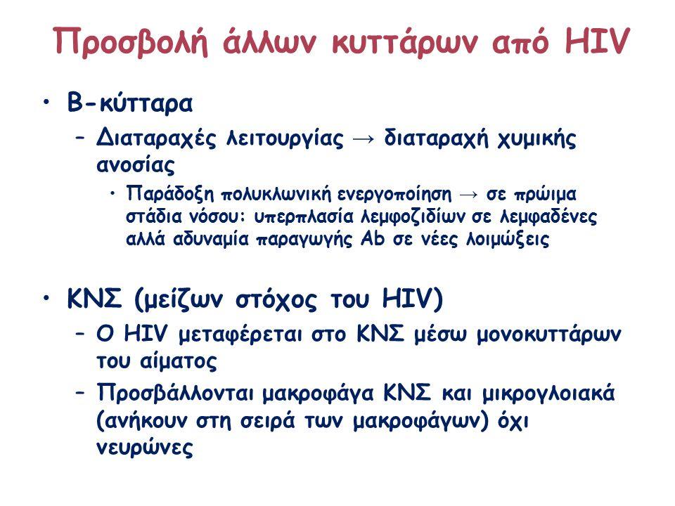 Β-κύτταρα –Διαταραχές λειτουργίας → διαταραχή χυμικής ανοσίας Παράδοξη πολυκλωνική ενεργοποίηση → σε πρώιμα στάδια νόσου: υπερπλασία λεμφοζιδίων σε λεμφαδένες αλλά αδυναμία παραγωγής Ab σε νέες λοιμώξεις ΚΝΣ (μείζων στόχος του HIV) –Ο HIV μεταφέρεται στο ΚΝΣ μέσω μονοκυττάρων του αίματος –Προσβάλλονται μακροφάγα ΚΝΣ και μικρογλοιακά (ανήκουν στη σειρά των μακροφάγων) όχι νευρώνες Προσβολή άλλων κυττάρων από HIV