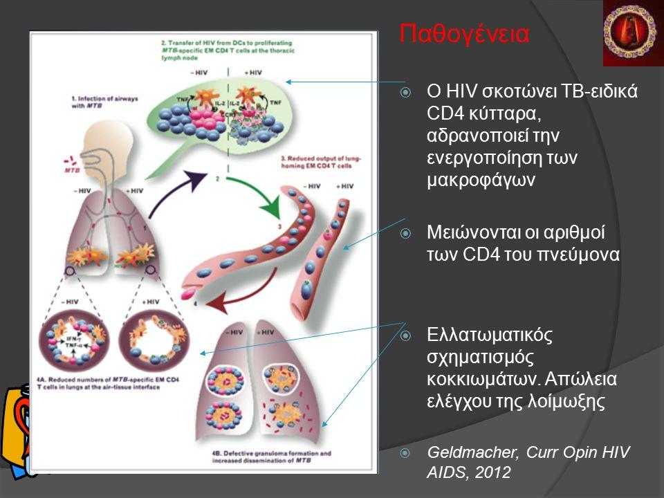 Παθογένεια  O HIV σκοτώνει ΤΒ-ειδικά CD4 κύτταρα, αδρανοποιεί την ενεργοποίηση των μακροφάγων  Μειώνονται οι αριθμοί των CD4 του πνεύμονα  Ελλατωματικός σχηματισμός κοκκιωμάτων.