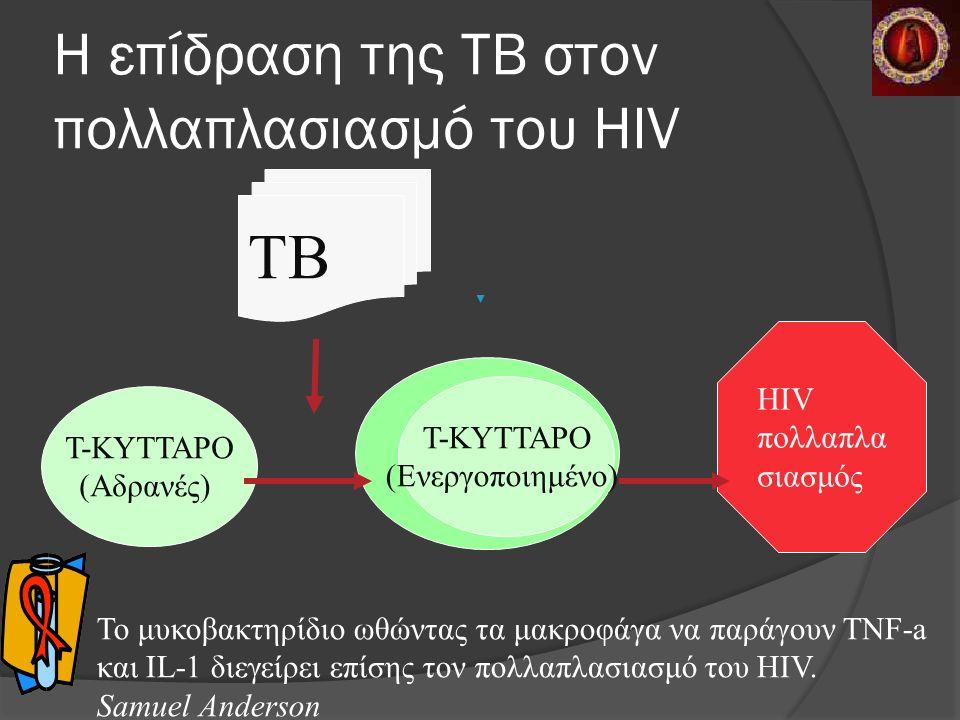 Η επίδραση της ΤΒ στον πολλαπλασιασμό του HIV TB T-KYTTAΡO (Αδρανές) ΗΙV πολλαπλα σιασμός T-KYTTAΡO (Ενεργοποιημένο) Το μυκοβακτηρίδιο ωθώντας τα μακροφάγα να παράγουν ΤΝF-a και IL-1 διεγείρει επίσης τον πολλαπλασιασμό του HIV.